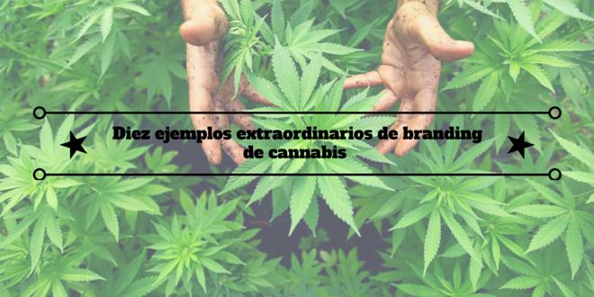 Diez ejemplos extraordinarios debranding de cannabis