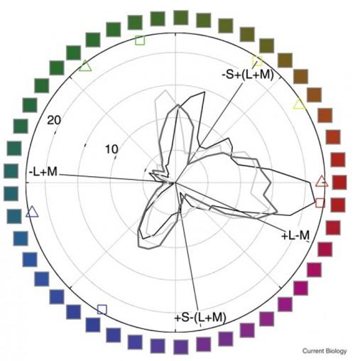 Colores-emociones-cerebro