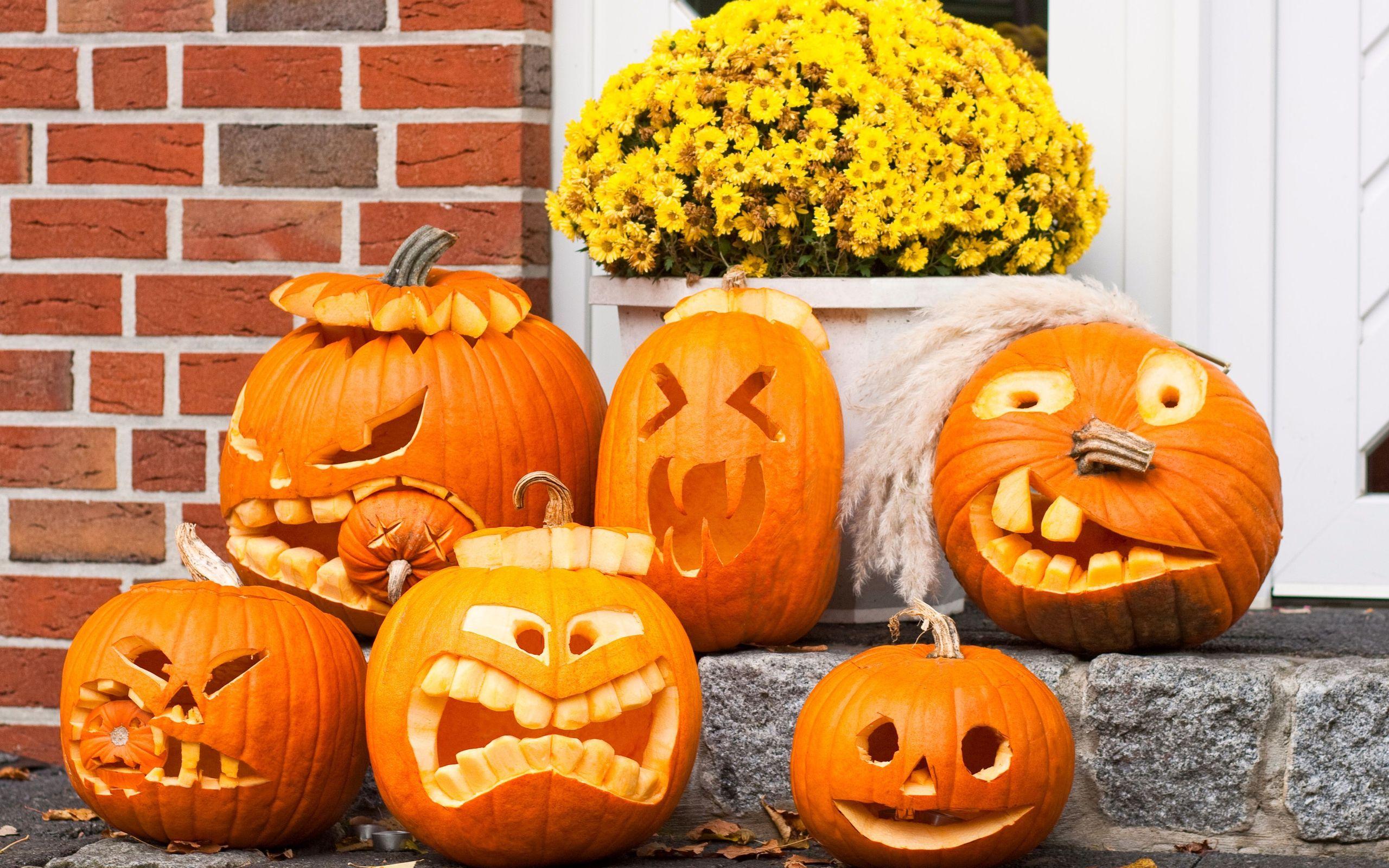 branding marca ganador halloween 1