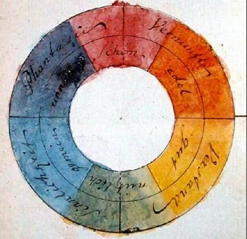 color-intuicion