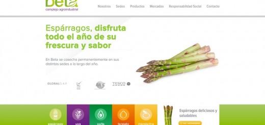 nueva web de complejo agroindustrial beta