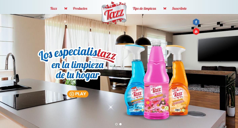 Las landing page en el dise o de p ginas web rinc n creativo for Anuncios de productos de limpieza
