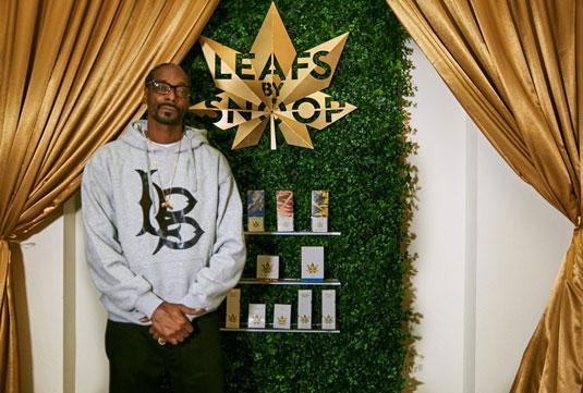 La agencia digital Pentagram se encargó del diseño de branding de Leafs By Snoop