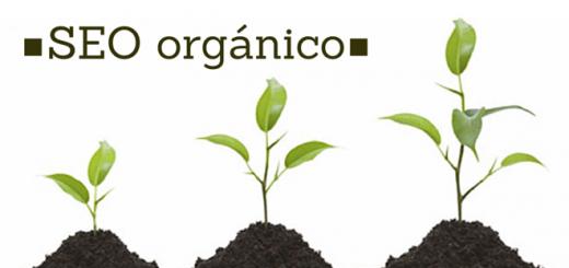 seo-orgánico